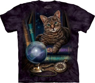 The Fortune Teller - The Mountain T-shirt