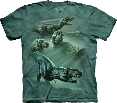 Dinosaur Collage - The Mountain T-shirt Kids
