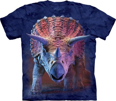 Charging Triceratops - The Mountain T-shirt Kids